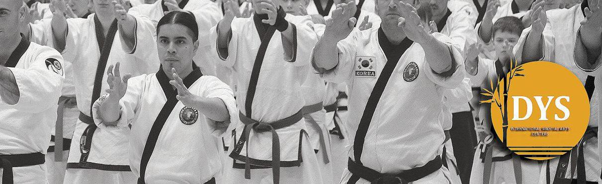 CENTROS DO YANG SAL – Centros Internacionales de Artes Marciales y Defensa Personal en Barcelona